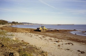 Goleta Beach Needs Your Help – Act Before August 22nd!